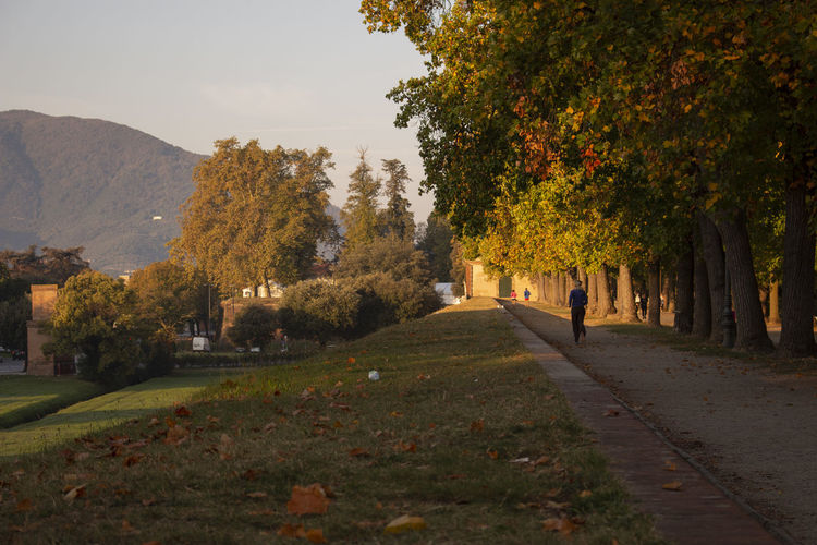 Lucca Italy Sunshine Morning Autumn Red Light Runningpath Best Time Fresh Air Beautiful Colors