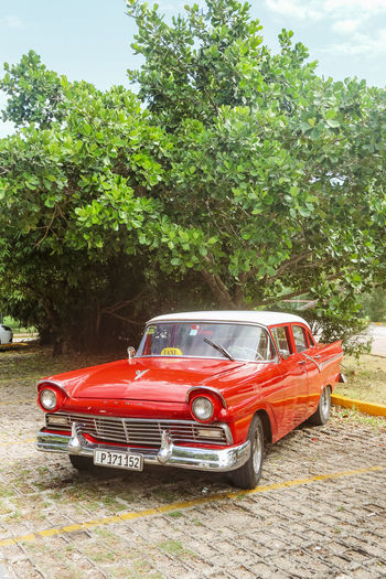 Vintage red ford taxi on parking lot, Cuba, Varadero, 4 November 2016 Mode Of Transportation Tree Transportation Red Car Motor Vehicle No People Outdoors Retro Styled Day Land Vehicle Nature Taxi Ford Vintage Vintage Car Cuba Varadero Cuba. Varadero Street