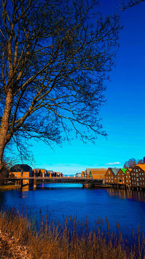 Spring in Trondheim ❤ Spring Springtime Spring Is Coming  Trondheim Trondheimpåsittbeste Gamlebybro Tree Outdoors Nature Clear Sky Architecture Beauty In Nature Water Blue Day Scenics Norway Norway🇳🇴 Norwegian Landscape