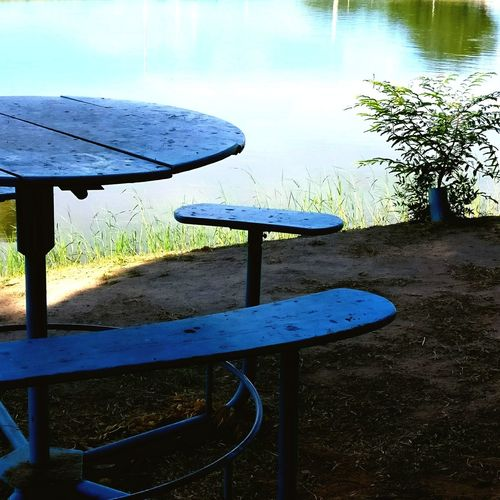Seat Table Blue Seedling River Green Water Nature Day No People Sand Petrolina Brazil