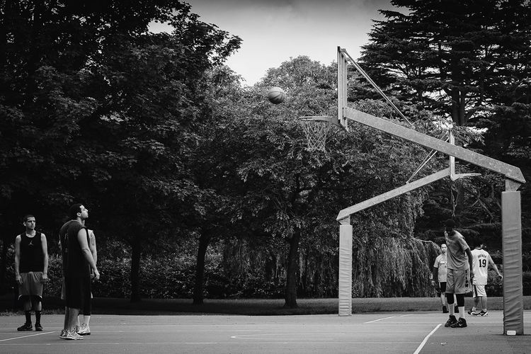Street Tree Real People Sport Leisure Activity Men Full Length Lifestyles Basketball - Sport Boys Competitive Sport Day Basketball Player Outdoors Basketball Hoop Playing Walking Sportsman Standing Togetherness Court