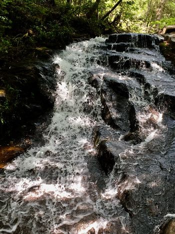Subject : Shakunage Falls. Beauty In Nature Nature Power In Nature Waterfall Water Motion Flowing Water River Rapid Rock - Object Forest Day Outdoors No People . Taken in Higashi-Hiroshima , Japan on May 23, 2017 ( Submitted on June 20, 2017 )