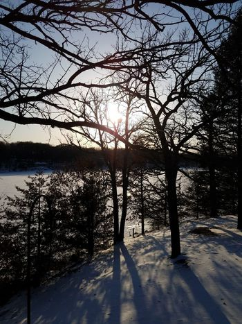 Sun Nature Sunlight Day Outdoors Beauty In Nature No People Tree Water Tranquility Snow Cold Temperature Visual Creativity