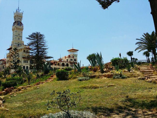 Architecturelovers Architecture Alexandria Luxury Palace Elmontazah Eyeem Egypt Egypt Garden Trees