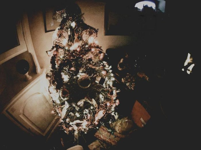 Canon1100d Luci Natale2015 Grandparentshouse Relaxing Decorazioni Toscana Tuscany Christmastime Christmas Decorations Christmas Lights Xmas Natale  Light Relaxingplace Home Sweet Home Lights Christmas Tree Fisheye