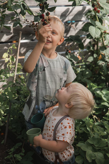 Cute boy looking at plants