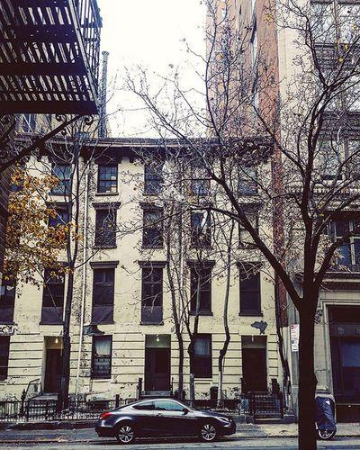 Newyorkcity Newyork ChelseaNYC