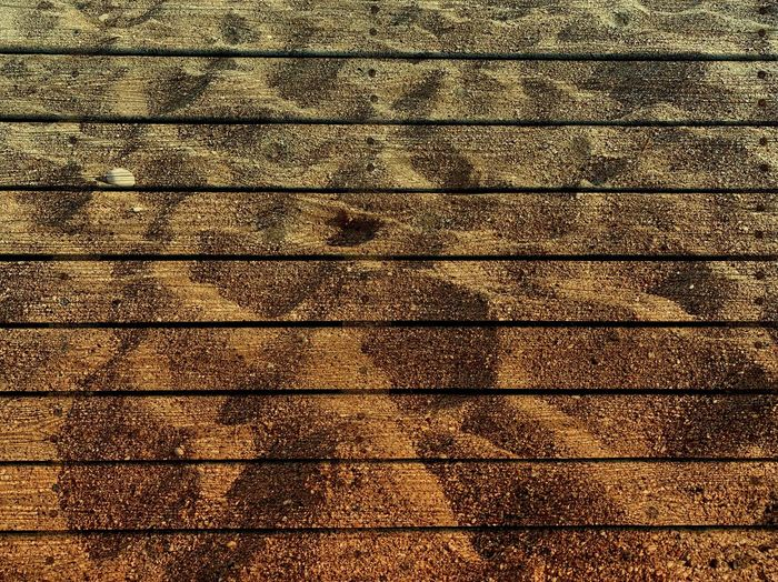 Backgrounds Texture Pattern Full Frame Backgrounds Textured  No People High Angle View Sunlight Day Shadow Flooring Close-up Repetition Outdoors Nature Built Structure Architecture Footpath Metal Abstract Tiled Floor 17.62°