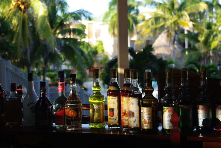 Bar Bottle Bottles Cayo Coco Cayo Coco Cuba Cuba Food And Drink Outside Bar Palm Tree Palm Trees Sunset