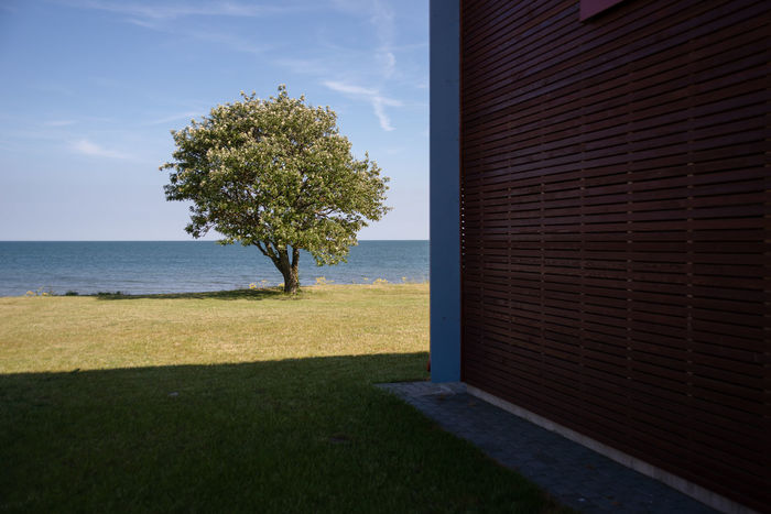 A scenic view near Sõrve Light, Torgu, Saaremaa Island, Estonia Blue Day Geometric Shapes Geometry In Nature Grass Green Color Minimalism Nature No People Outdoors Sea Sky Summer Sunset The Baltic Sea Trees Waterfront The Architect - 2017 EyeEm Awards
