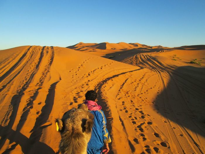 High angle view of man walking with camel on desert