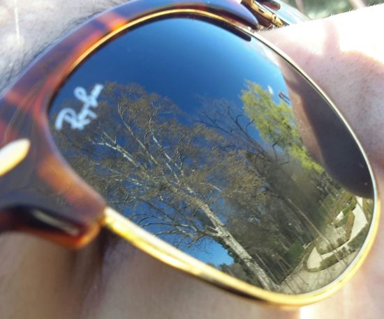 Reflection Close-up Nature Sunglasses Reflection Sunglasses Selective Focus Trees And Sky Reflection Close-up Glass - Material Transportation Mode Of Transport Transparent Selective Focus Nature Tranquility Day No People Beauty In Nature