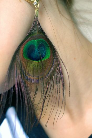 Photography Peace ✌ Peacock Peacock Feather Colorful Earrings