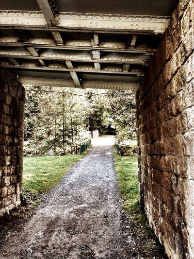 Supernormal Bridge Walking Around