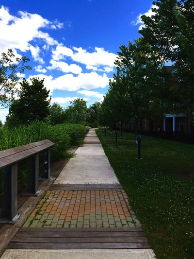 The path home.