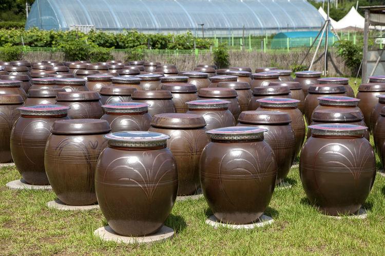 Earthenware arranged on grass