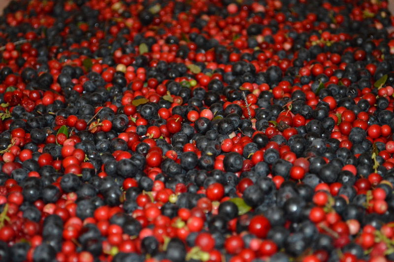 Full frame shot of berries