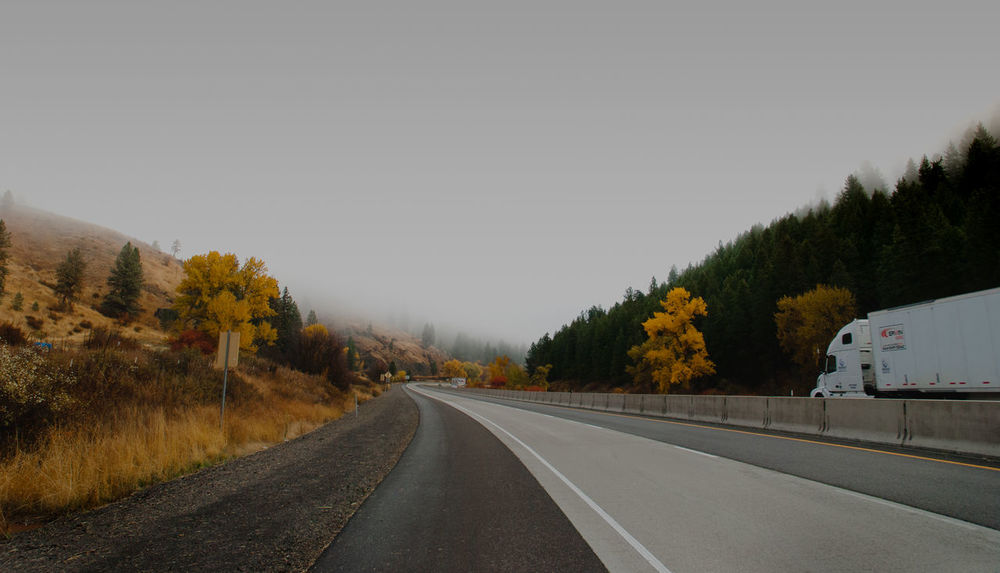 Tree Road The Way Forward Transportation No People Asphalt Nature Outdoors Day Sky EyeEmNewHere Travel Landscape Yellow Fall Autumn Curved Road Wallpaper Movement Freeway Oregon PNW New Talent Perspectives On Nature