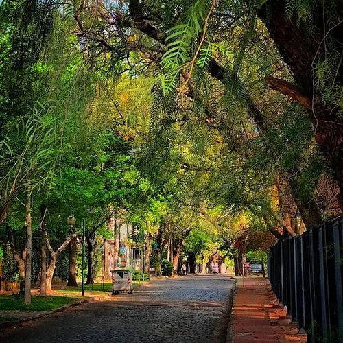 Appointment with doctor. Street Path Walkin Walk Martinez Buenosaires ZonaNorte Residential  Afternoon Casual Spring Picoftheday Instamoment Instalike Instacool Instapic
