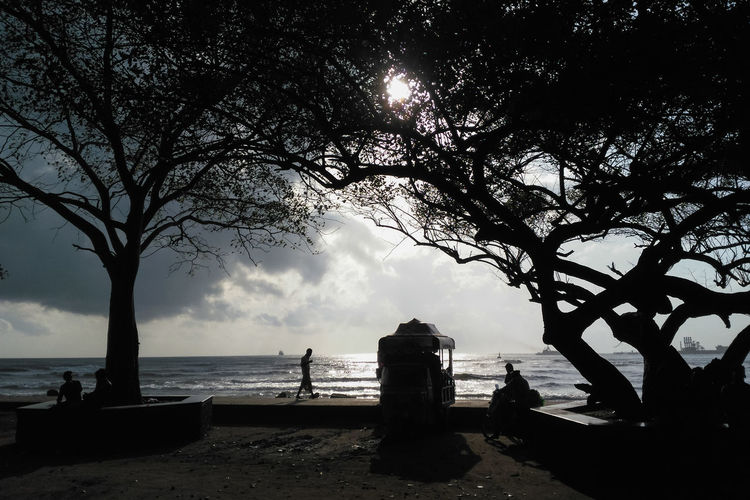 Beach silhouette. Fort kochi. Kerala India Kerala India Fort Kochi Silhouette Darkness And Light Beach Walkway Landscape