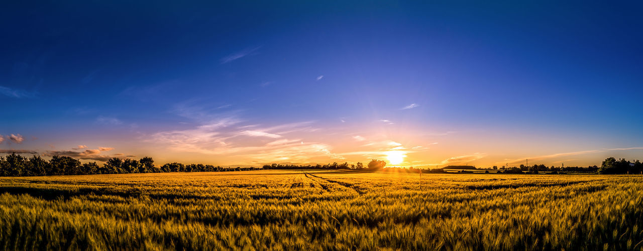 Panoramic view of field against sky during sunset