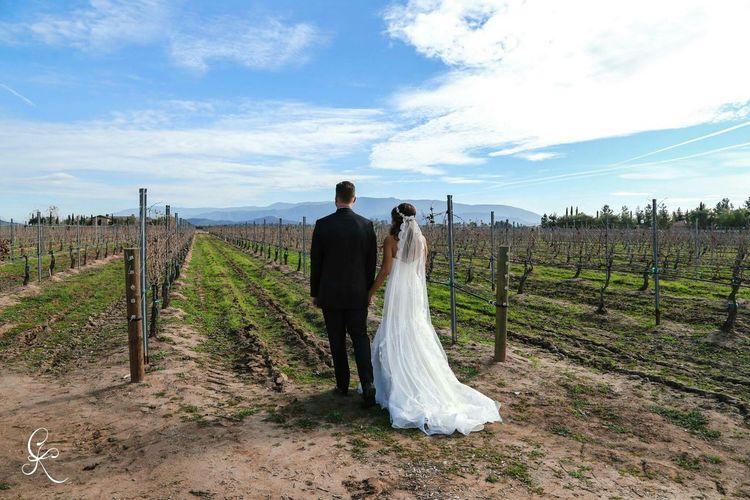 Popular Photos Wedding Photography Vineyard Wedding Newlyweds Brideandgroom Scenic View Enjoying Life EyeEm Best Shots - Landscape
