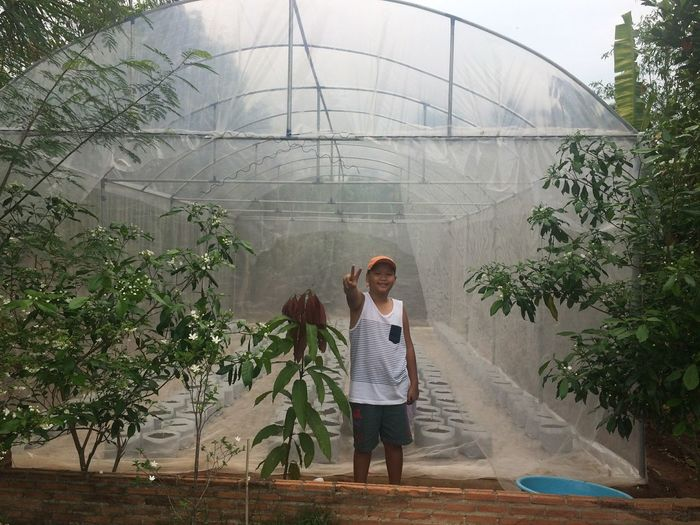 Portrait Of Boy Gesturing Peace Sign Against Greenhouse