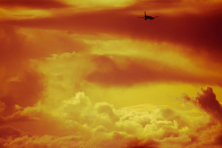 Air Vehicle Airplane Cloud - Sky Day Flying Low Angle View Nature Outdoors Sky Sunset Transportation The Secret Spaces