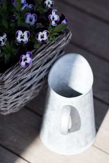 Basket Beauty In Nature Close-up Container Day Flower Flower Pot Flowering Plant Focus On Foreground Fragility Freshness Growth High Angle View Nature No People Outdoors Plant Potted Plant Purple Sunlight Vulnerability  Wood - Material
