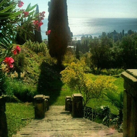 Nature of Abkhazia