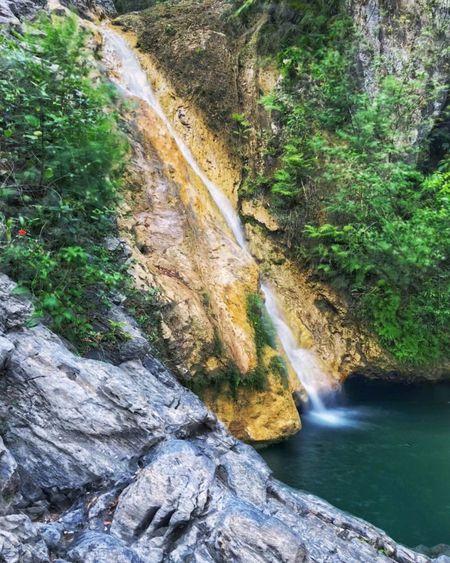 Cuba ShotOnIphone Cuba Water Plant Beauty In Nature Tree Scenics - Nature Forest Flowing Water Nature Waterfall No People Outdoors Non-urban Scene