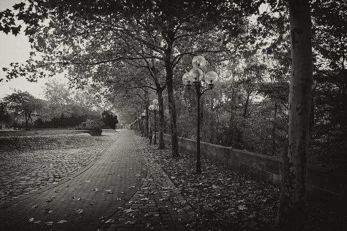 EyeEm Best Shots - Black + White Street Street Photography Blackandwhite