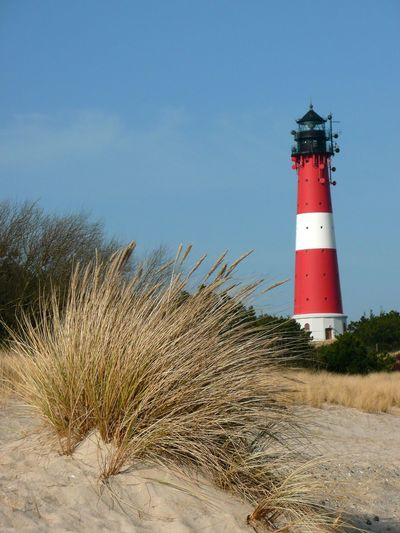 Hörnumer Leuchtturm an der Hörnumer Odde. Hoernum lighthouse on the island of Sylt. Architecture Building Exterior Built Structure Day Guidance Lighthouse Nature No People Outdoors Protection Safety Sky Tower Tree North Sea Westerland Hörnum-Odde Leuchtturm Tranquility Hörnum, Sylt-Westerland, Kantum, List Auf Sylt Lighthouse_captures Hörnum Sylt, Germany Tranquil Scene Sylt Strand