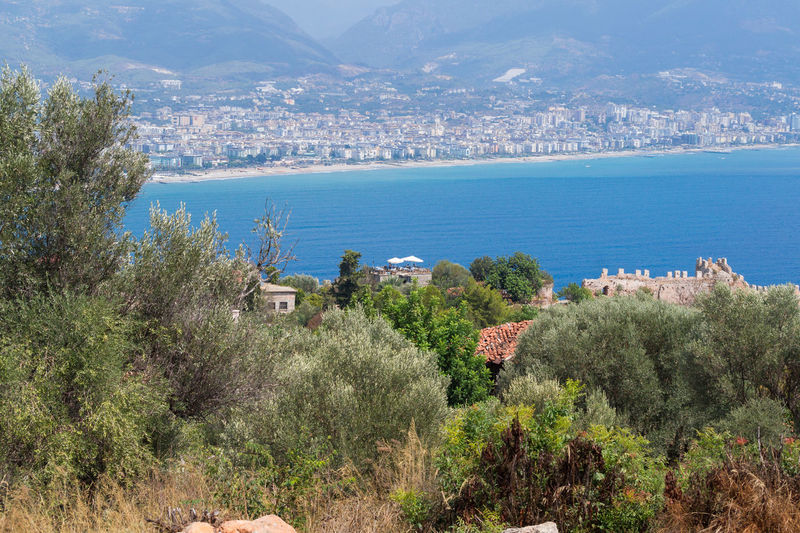 Alanya Beauty In Nature Coastline Enjoying The View EyeEm Gallery Focus On Foreground From My Point Of View Hazy Weather Idyllic Landscape Nature Nature_collection Naturelovers Ocean Ocean View Plants Travel Destinations Traveling Water