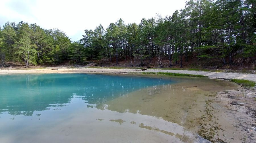 Green New Jersey New Jersey Isn't Boring Pine Barrens Sparkle Blue Clear Clear Water New Jersey Photography Pinebarrens Quarry Quarry Lake Sky And Water Water