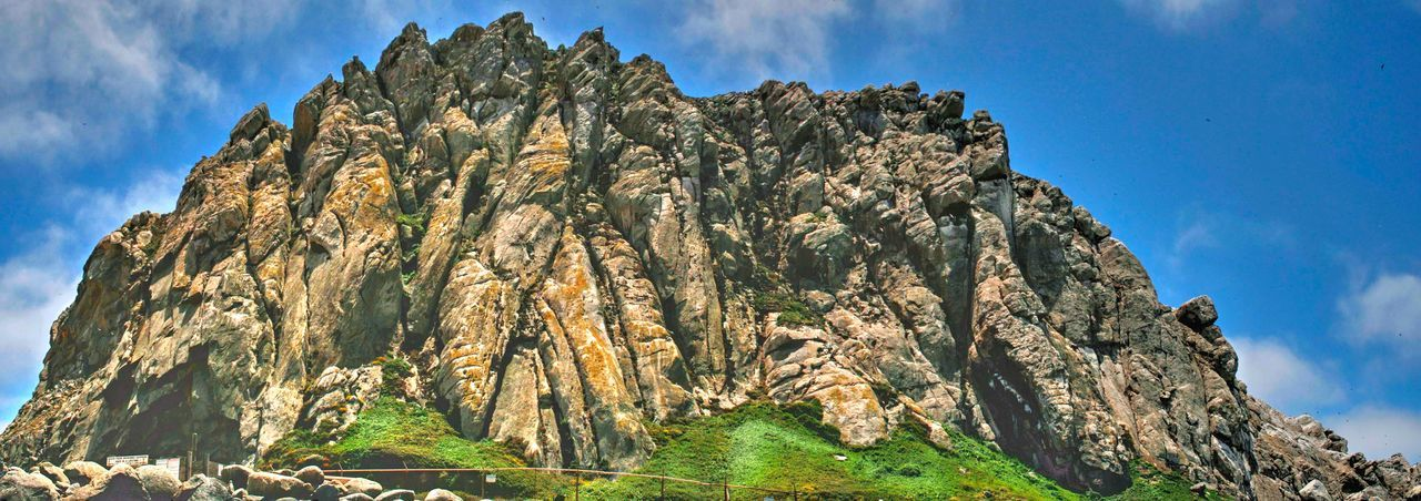 Morro Rock Morro Rock Morro Bay, California Tree Mountain Panoramic Rock Face Cliff Forest Pinaceae Pine Tree Sunlight Rock - Object Rock Formation Physical Geography Rugged