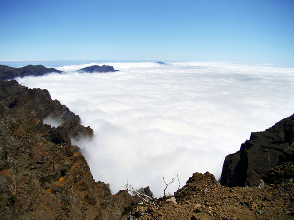 Above the clouds of the Canary Islands La Palma. In the valley of a volcano, a carpet of clouds spreads out. Beautiful. Atmosphere Blue Wave La Palma, Canarias Landmarks Beauty In Nature Blue Carpet Of Clouds Clouds Day Landscape Mountain Nature No People On The Top Outdoors Over The Clouds Physical Geography Rock - Object Rough Texture Scenics Sky Tranquil Scene Tranquility Volcanic Landscape Volcano