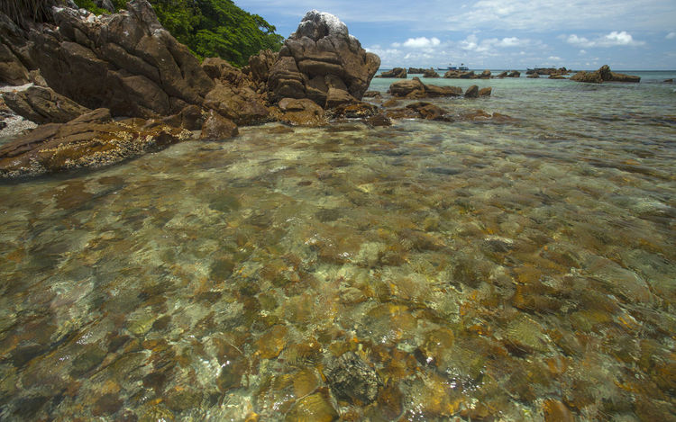 The sea with clear water and the rock formation Beauty In Nature Day Nature No People Outdoors Rock - Object Sky Water