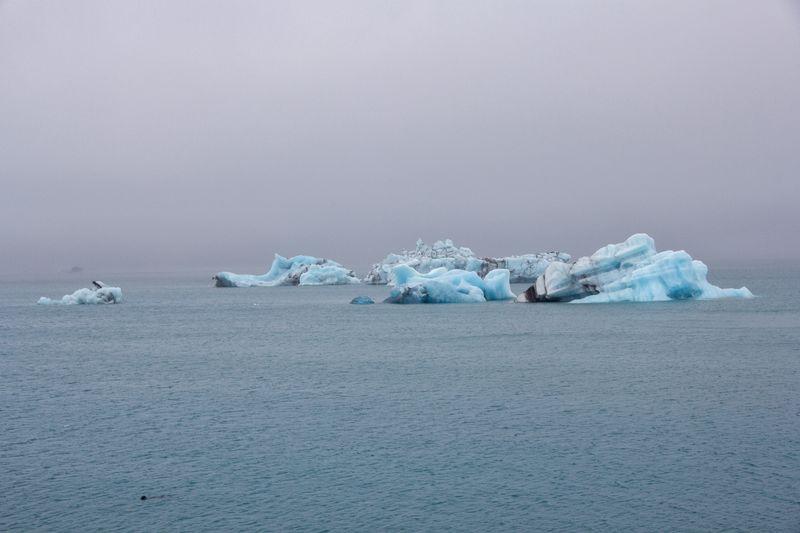 Icebergs EyeEm