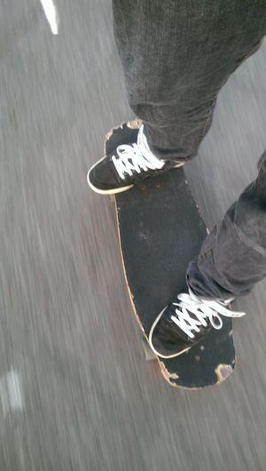 Hosoi Skateboarding hammerhead 87