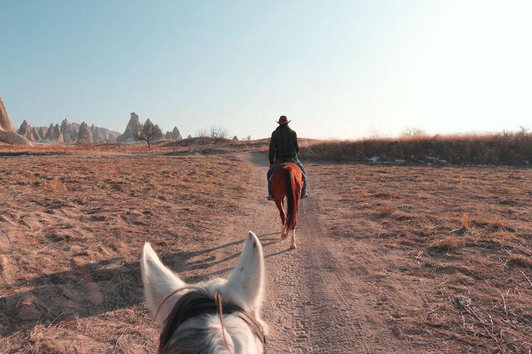 Horse riding pov