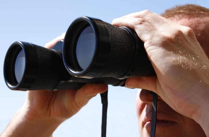 Using binoculars to aid in the search Binoculars Close-up Day Examining Eyesight Focus On Foreground Holding Human Body Part Human Hand Looking Men Observing One Person Outdoors People Real People Searching Seeking Sky Using Binoculars