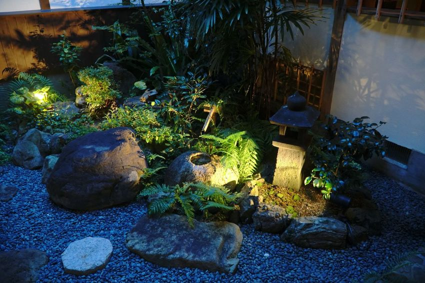 小庭 α6300 Nightphotography EyeEm Best Shots Japan Enjoying Life Relaxing Relaxing Light 灯 Dark 和