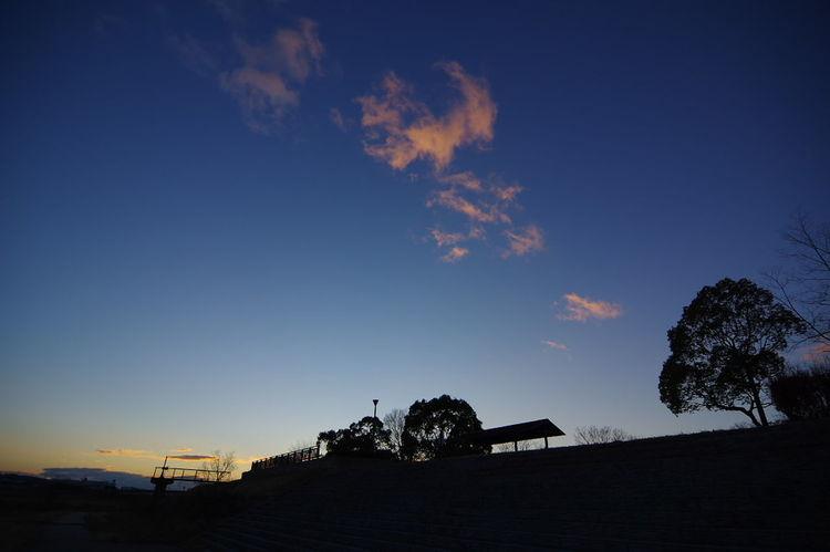 夕景 Evening Sky Evening Light Evening Clouds Built Structure Business Finance And Industry Sky Cloud - Sky Tree Sunset Architecture Day Building Exterior