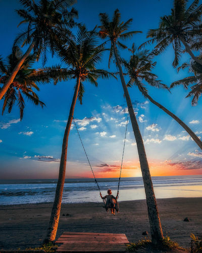 Rear view of woman on swing at beach during sunset