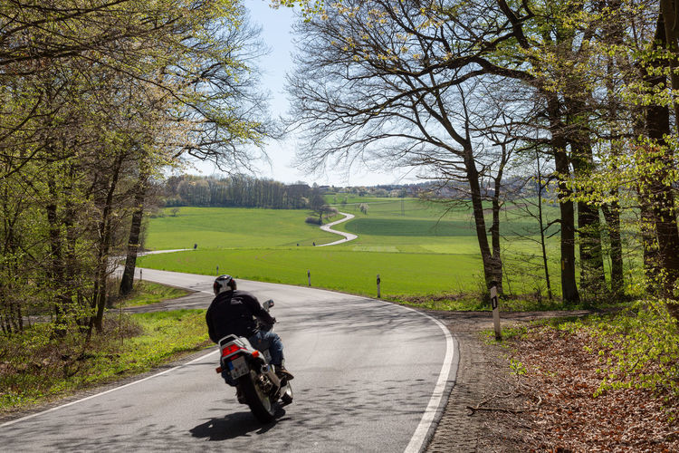 Transportation Tree Road Plant Direction The Way Forward Nature Mode Of Transportation Day Rear View One Person Riding Ride Leisure Activity Outdoors Diminishing Perspective Winding Road Germany Motorcycle Light And Shadow Field Green