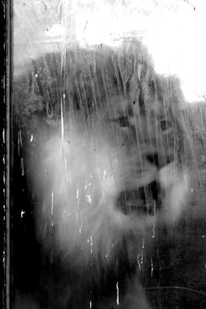 Animal Themes Behind The Glass Black And White Black And White Photography Dirty Window Light And Shadow Lion Male Lion Upset Zoo Animals  Zoo Life