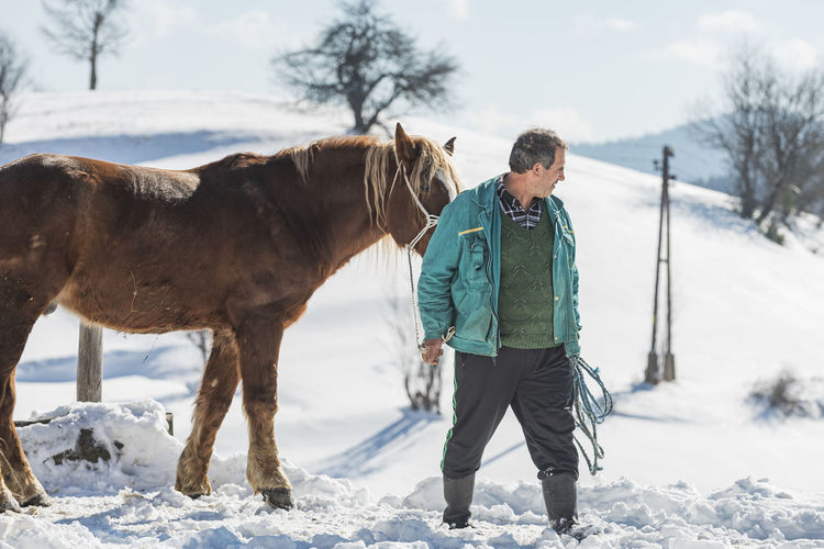 Full length of a horse on snow covered field