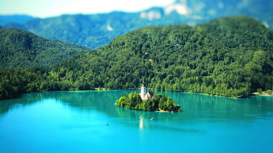 Slovenia Slovenia Scapes Slovenian Alps Lake View Mountains Mountain Range Bled, Slovenia Bled Lake Slovenia Bled Lake Bled Island Summer Natural Pattern Tranquil Scene Patterns In Nature Nature Beauty Nature On Your Doorstep Nature Photography Tourist Attraction  Tourism Traveling Travel Destinations Travel