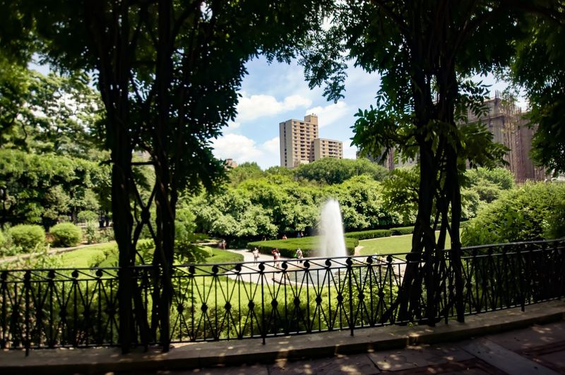 Tree Architecture Railing Green Color Growth Built Structure Building Exterior No People Sky Outdoors Day Water Skyscraper Nature City Urban Skyline Fountain Summerinthecity Lightandshadow Urbanoasis Serenity Central Park - NYC